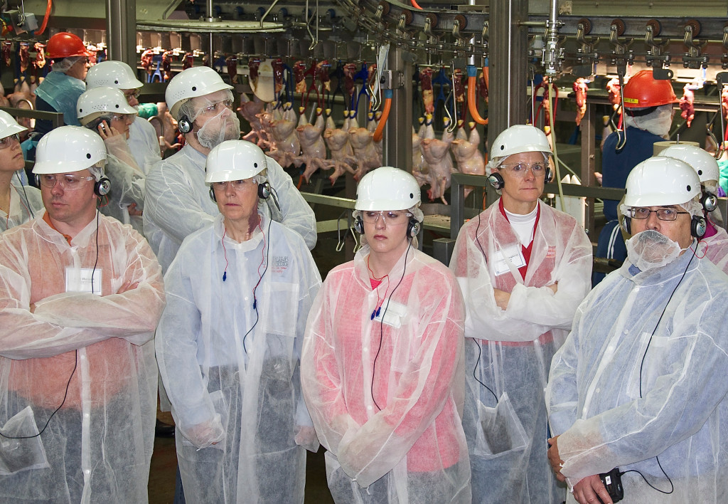 Attendees tour first processing at Amick Farms